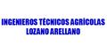 Ingenieros Técnicos Agrícolas Lozano